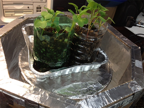 Bion plants growing in student made rocket fuel tank