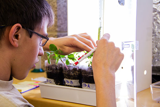 Student measures plant growth